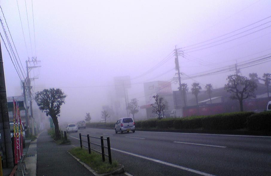 Fog081104_2